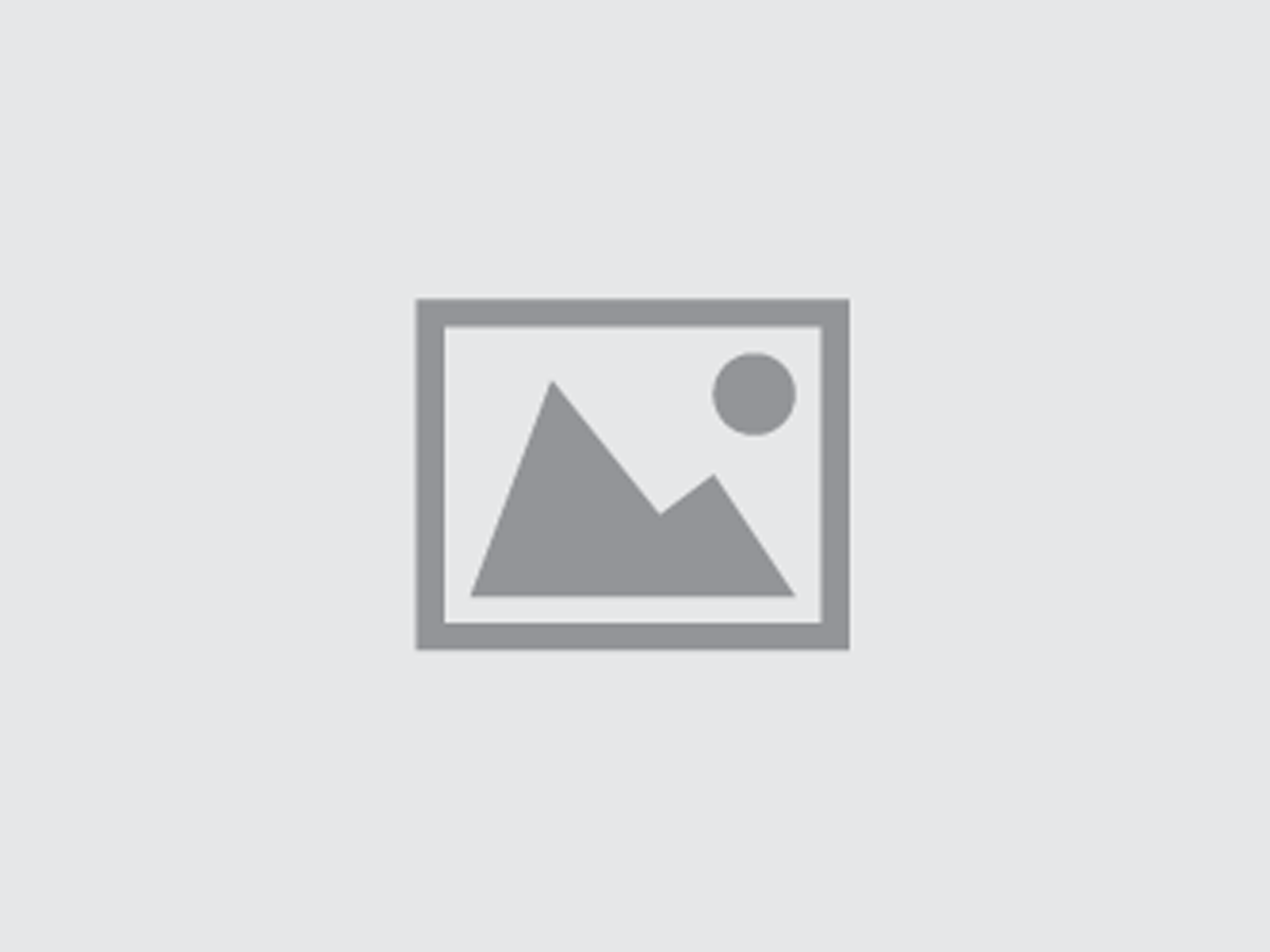 Audi R For Sale In Auckland Continental Cars - Audi r8 quattro